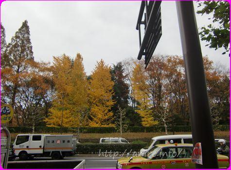 秋の風景2013-R