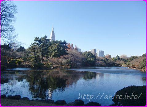 新宿御苑の景色