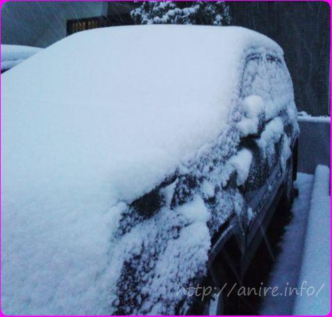 雪の日のLOHACO