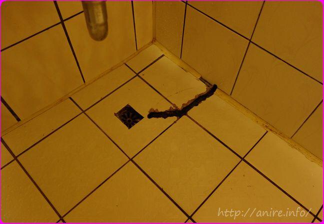 浴室に謎の穴