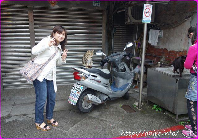 台湾ホウトン-R