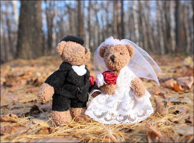 新婚マイホーム